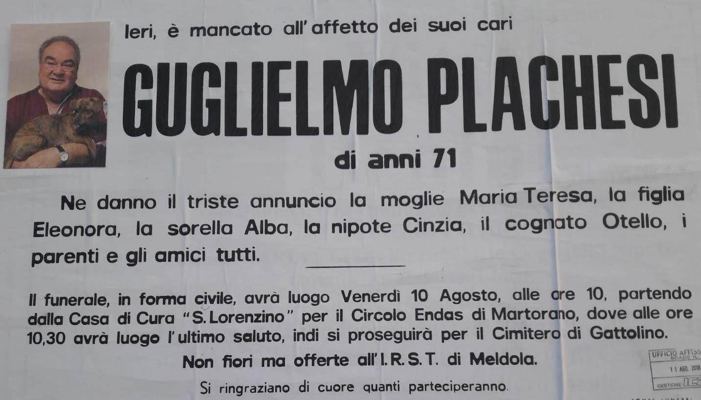 Manifesto Guglielmo Plachesi